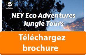 Téléchargez brochure Circuits dans la jungle de l'Amazonie Manaus